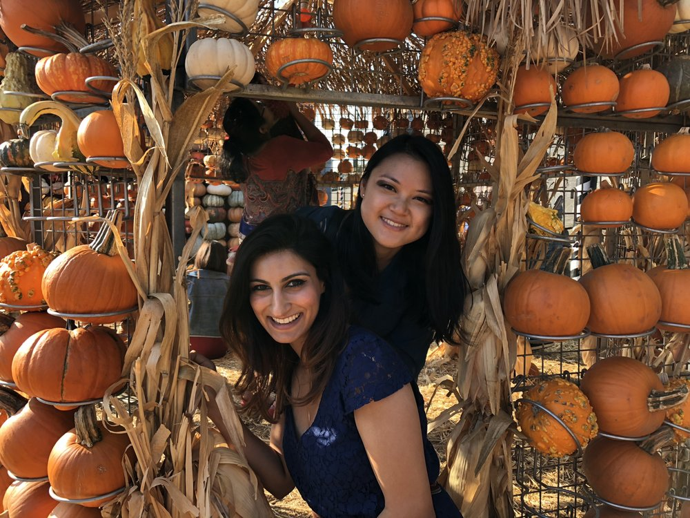 Solano county pumpkin patch and fall festival guide! | macaroni kid.