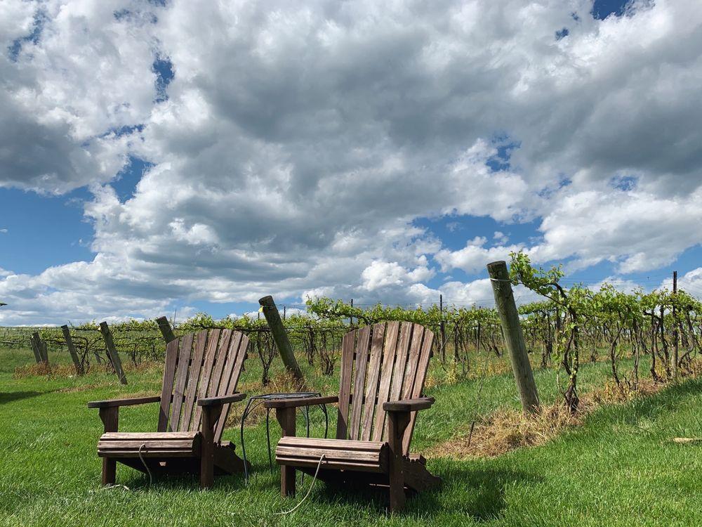 Rockbridge Vineyard: 35 Hillview Ln, Raphine, VA