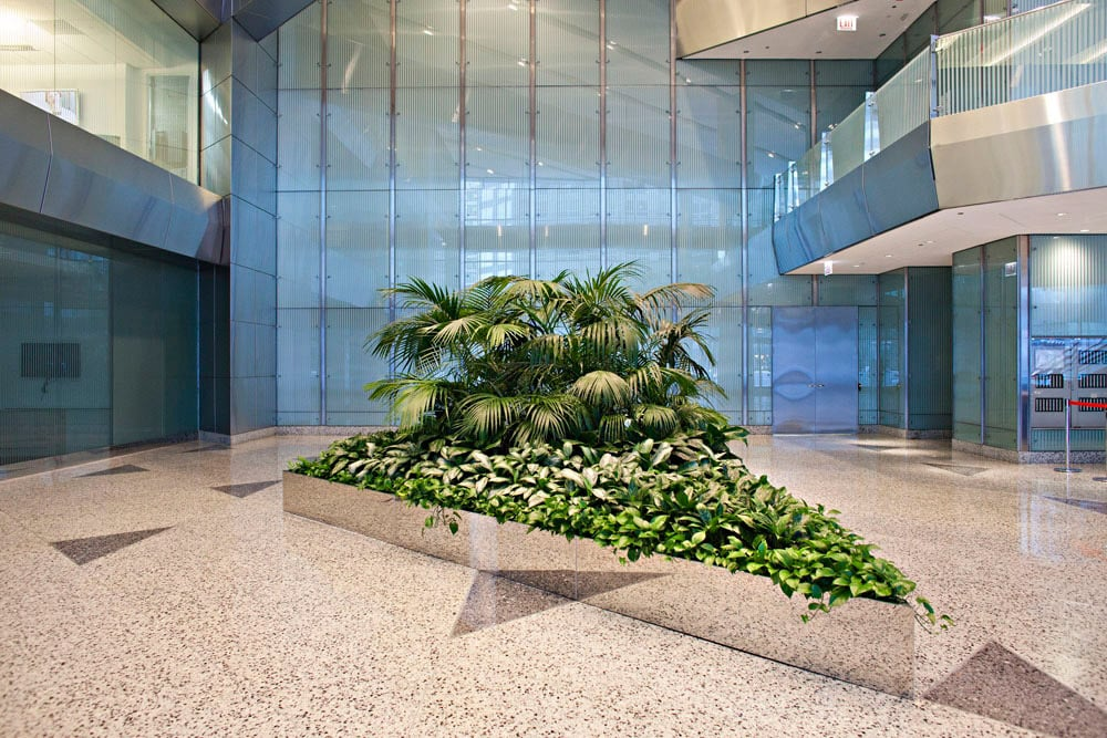 15 photos for Phillips Interior Plants & Displays