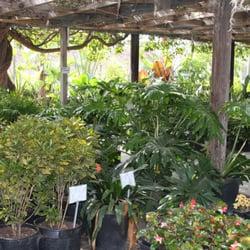 Photo Of Terra Bella Nursery Inc San Go Ca United States