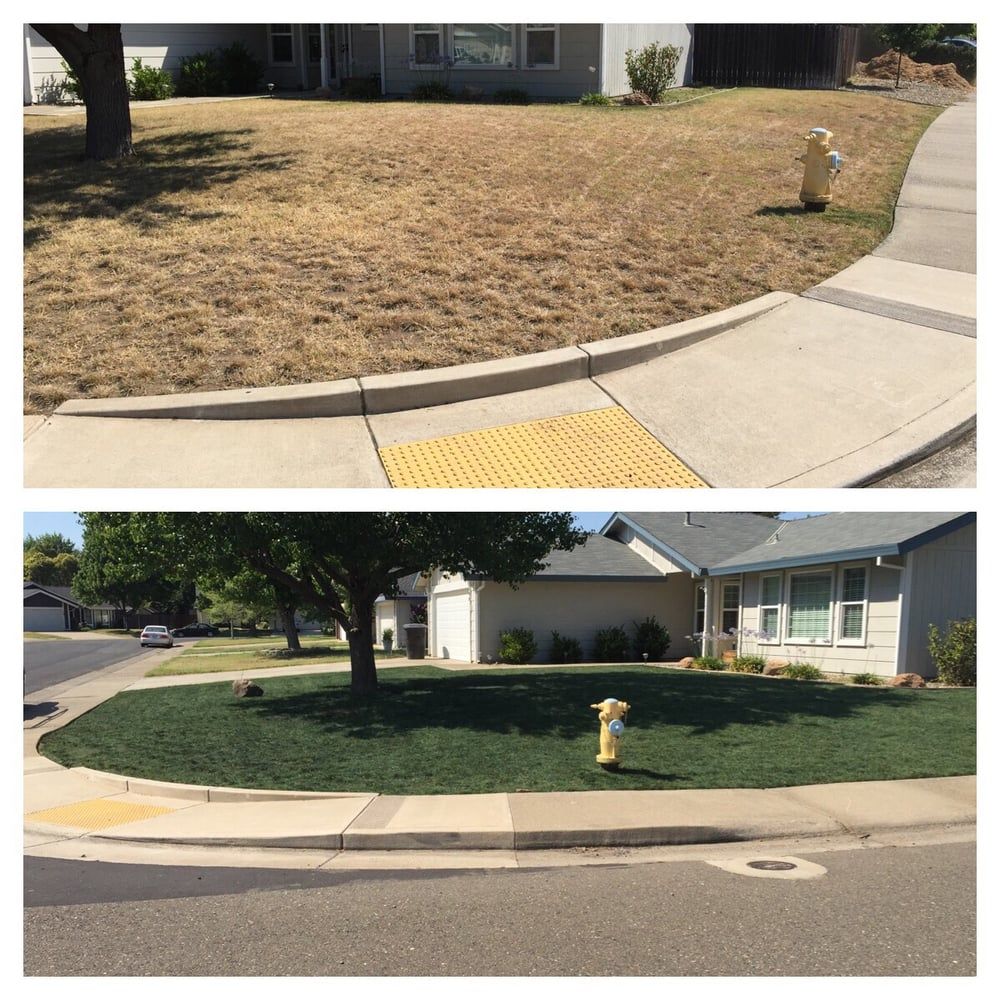 Cut Right Lawn Care - 34 Photos U0026 16 Reviews - Gardeners - 8000 Painted Desert Way Roseville ...