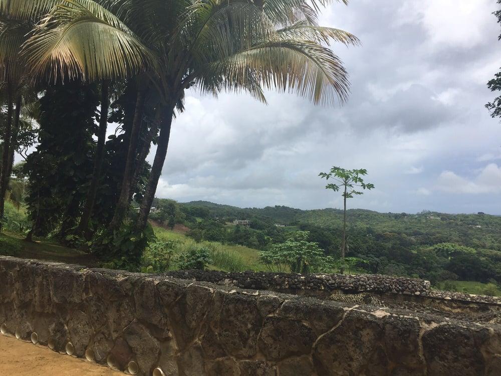 Hacienda Azucena: Camino Los Tapia S/N, Guzmán Abajo, PR