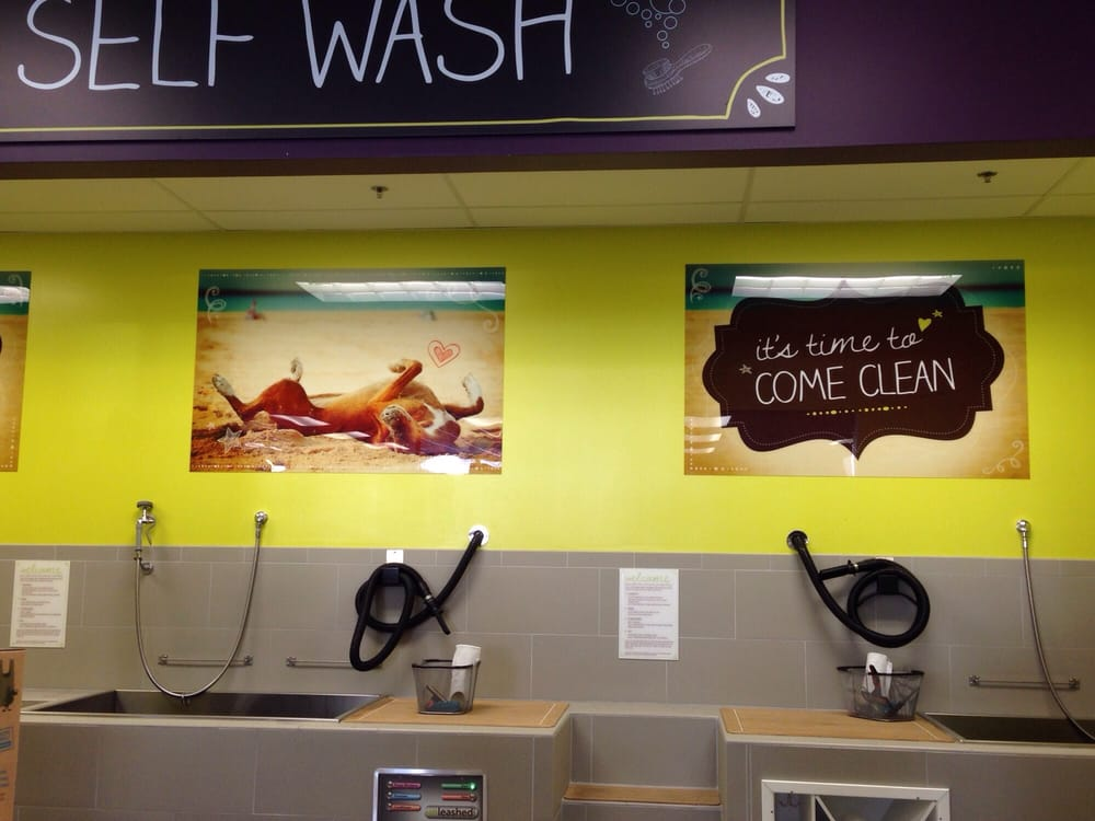 Self serve dog wash unleashed by petco yelp photo of unleashed san diego ca united states self serve dog wash solutioingenieria Image collections