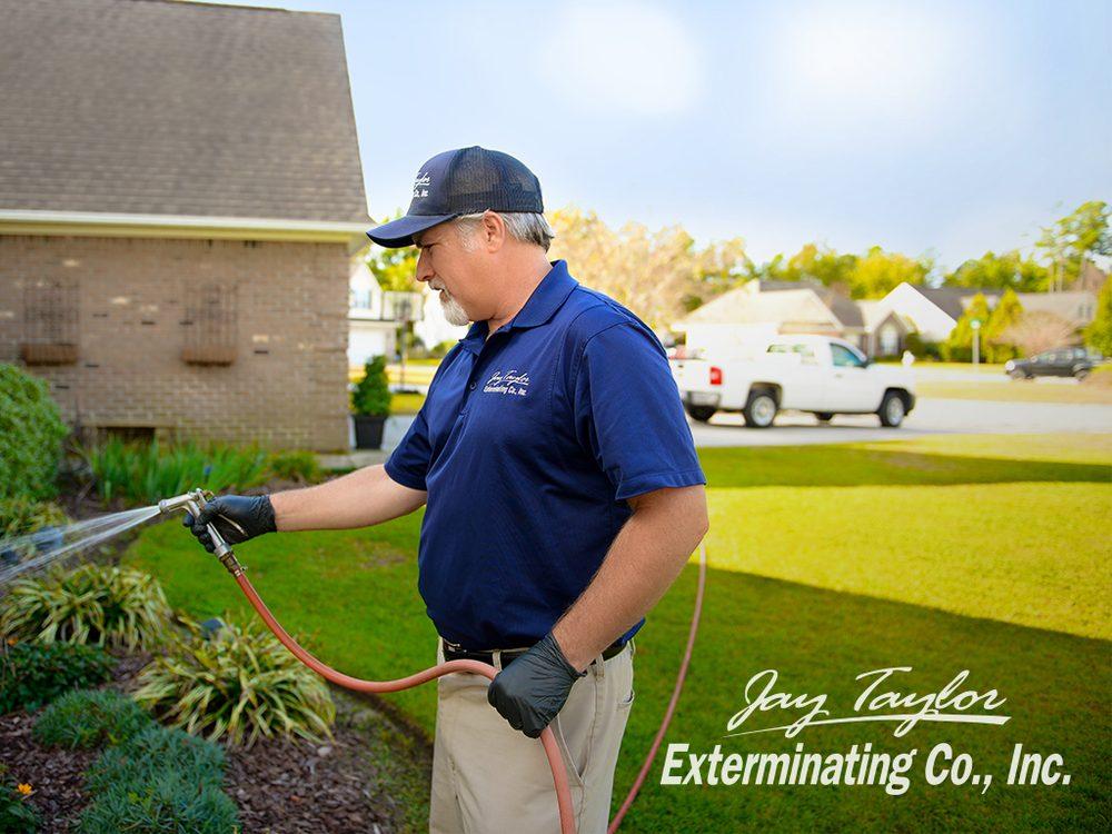 Photo of Jay Taylor Exterminating: Wilmington, NC