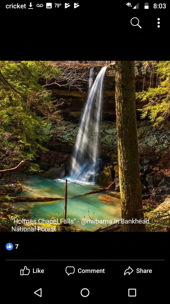 Bankhead National Forest: 1070 AL-33, Double Springs, AL