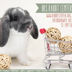 rabbits   a yelp list by anne m