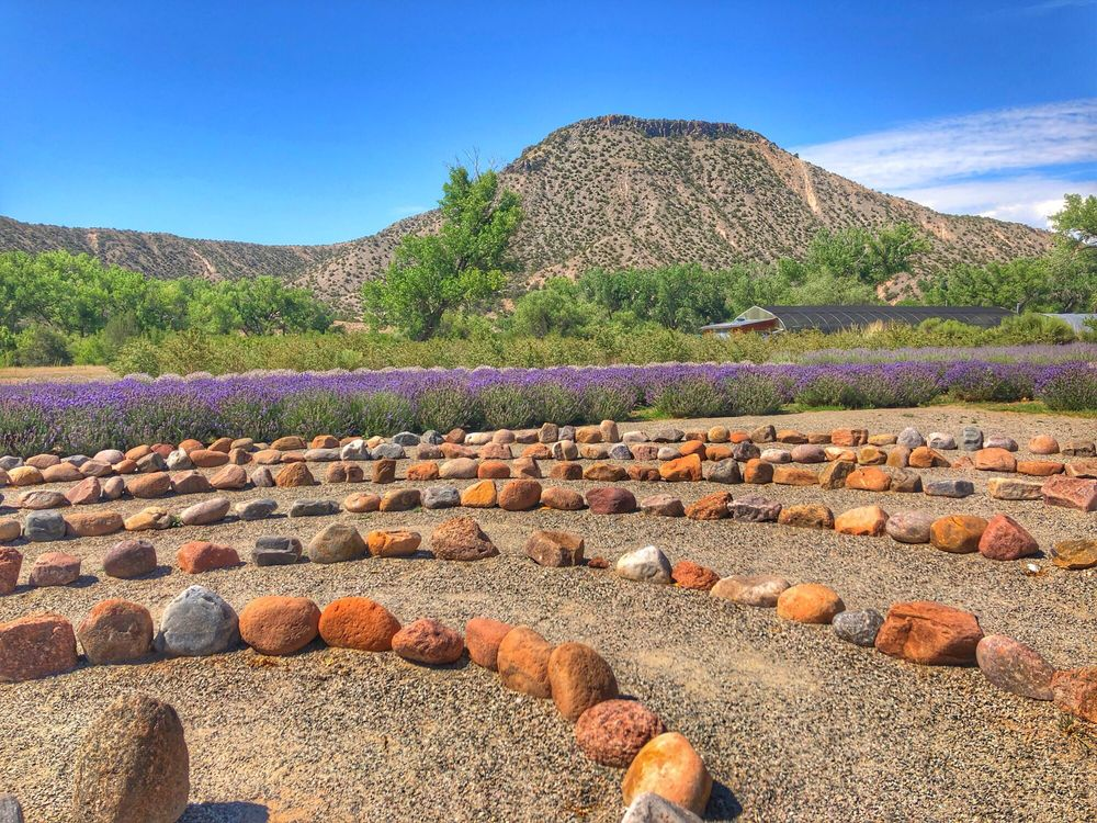 Purple Adobe Lavender Farm: Hwy 84 Rd 1622, Abiquiu, NM