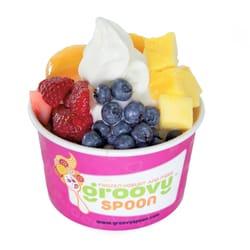 frozen yogurt in van nuys ca