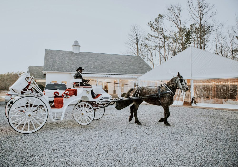 Mo's Carriages and Trail Rides: 1020 Old Section Rd, Hoover, AL