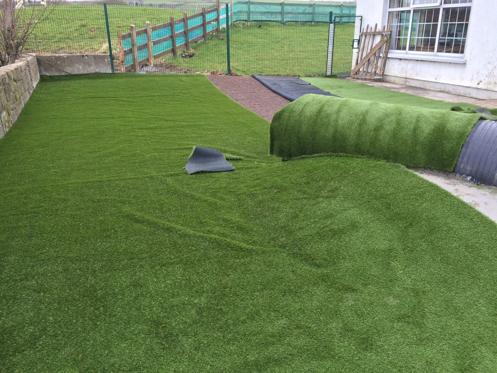 Dog Grass Deliver Services