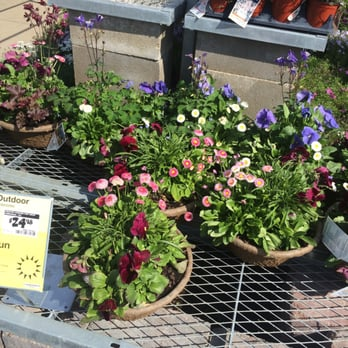 the home depot 18 photos 21 reviews nurseries gardening 670 s rand rd lake zurich il. Black Bedroom Furniture Sets. Home Design Ideas