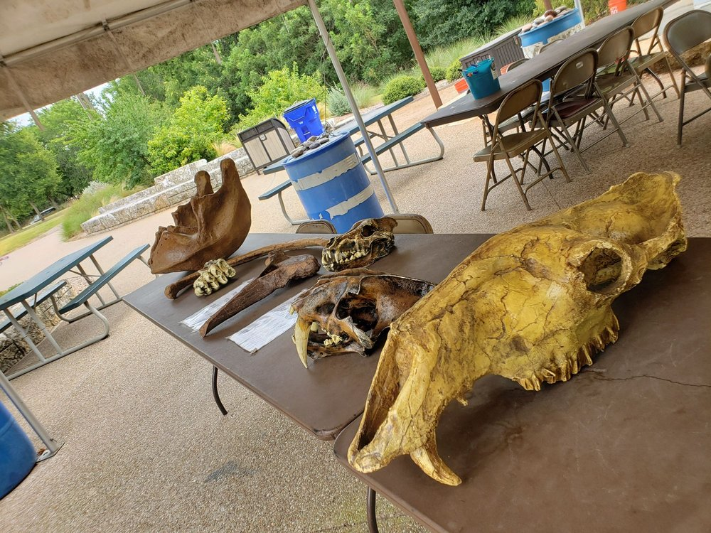 Social Spots from Waco Mammoth National Monument