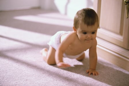 Allied Carpet Care: 10246 W Lariat Dr, Boise, ID