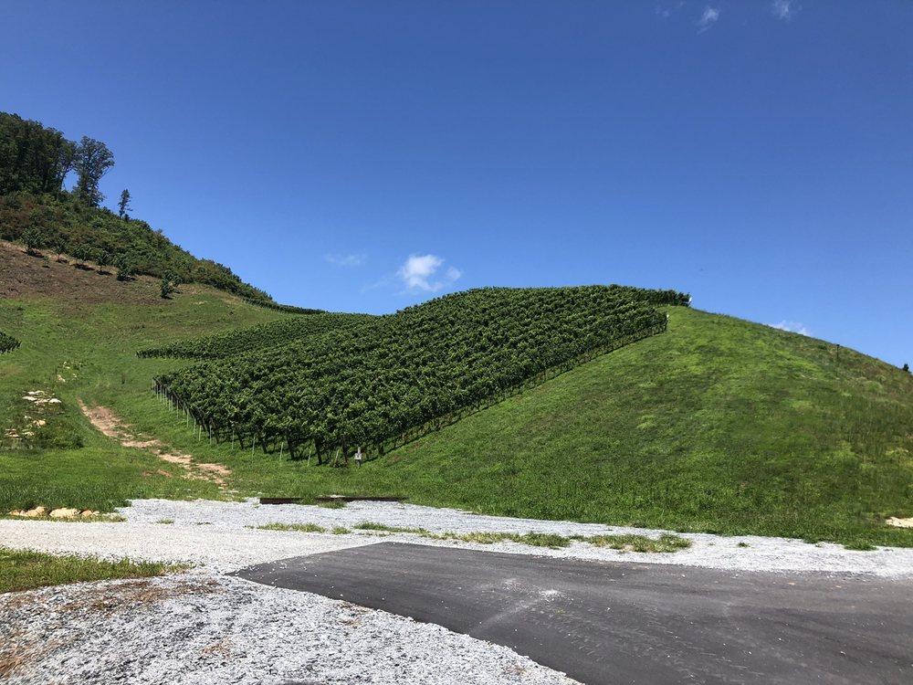 Stone Ashe Vineyard: 736 Green Mountain Rd, Hendersonville, NC
