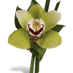 Photo Of Miami Gardens Florist   Aventura, FL, United States