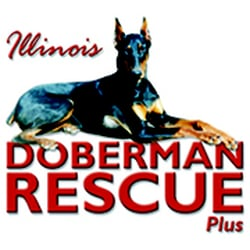 illinois doberman rescue