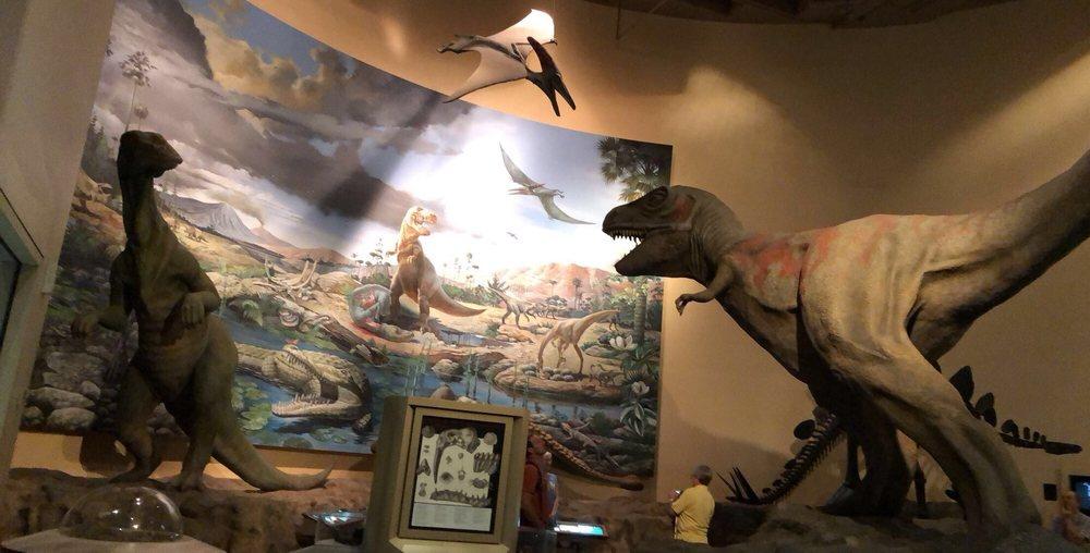 Fernbank Museum of Natural History: 767 Clifton Rd NE, Atlanta, GA