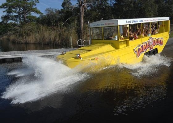 Duck Boat Tours Panama City Beach Fl