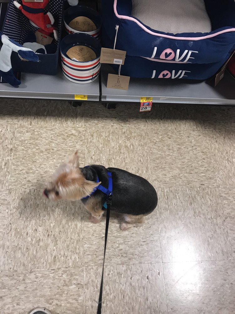PetSmart: 13241 Gateway Center Dr, Gainesville, VA