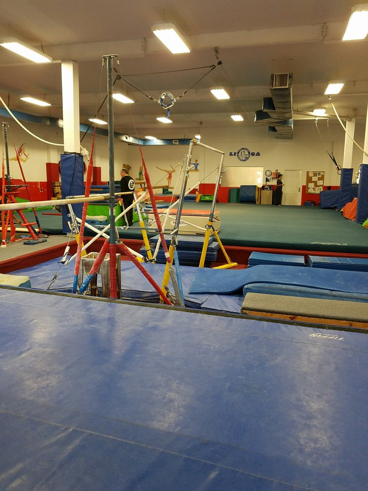 Long Island Gymnastics Academy: 565 Willow Ave, Cedarhurst, NY