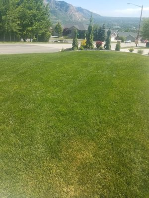 Photo Of Lawn Police   North Ogden, UT, United States