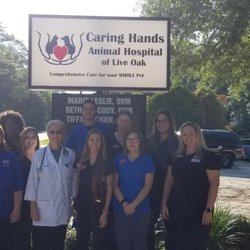 Caring Hands Animal Hospital of Live Oak - Request