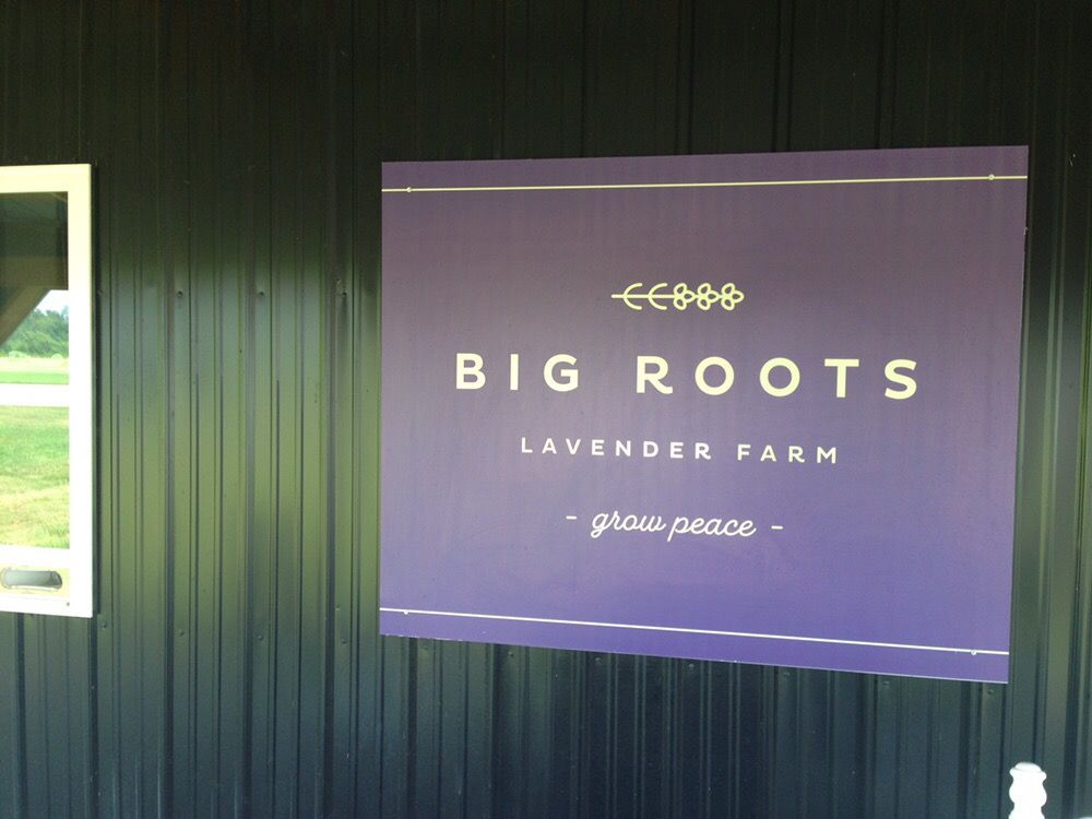 Big Roots Farm: 3204 Truman Young Rd, Hawesville, KY