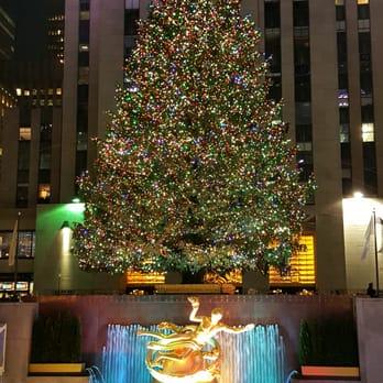 Rockefeller Center Christmas Tree - 499 Photos & 147 Reviews ...