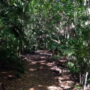 ... United Photo Of Key West Tropical Forest U0026 Botanical Garden   Key West,  FL, ...