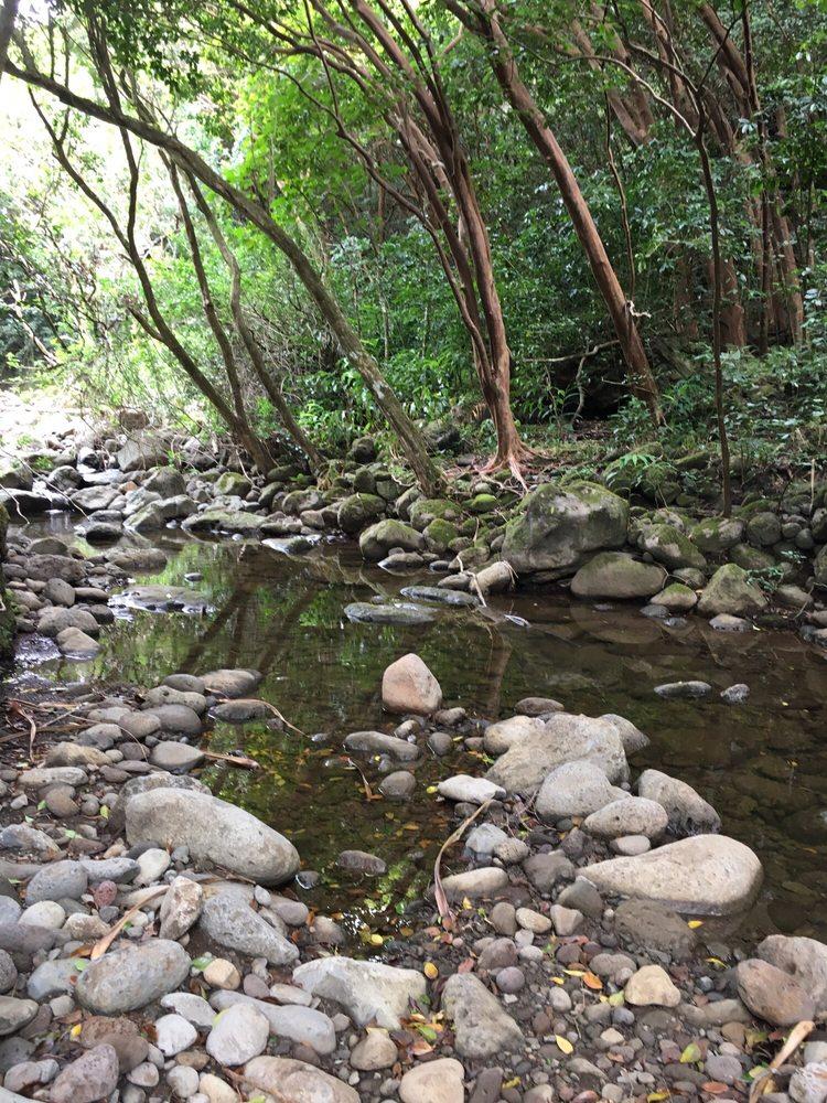 Social Spots from Koloa Falls