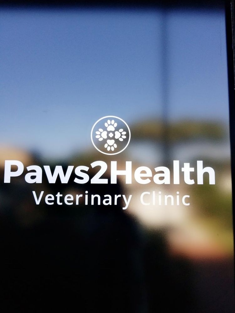 Photo Of Paws2health Veterinary Clinic West Palm Beach Fl United States Walk