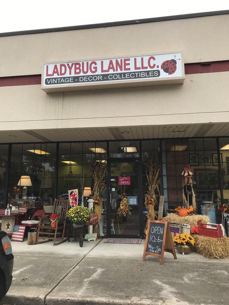 Ladybug Lane: 541 S Washington Hwy, Ashland, VA