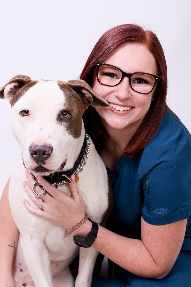 Gulf Coast Veterinary Center of Tampa: 6178 Gunn Hwy, Tampa, FL