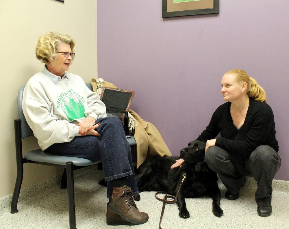 Memorial Animal Hospital: 2222 State Rte 59, Kent, OH