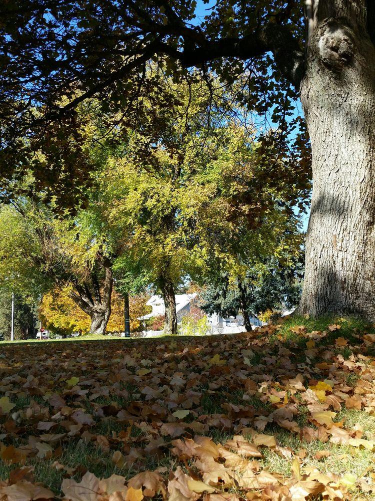 Swinyard Park: 226 S Margaret Ave, Deer Park, WA