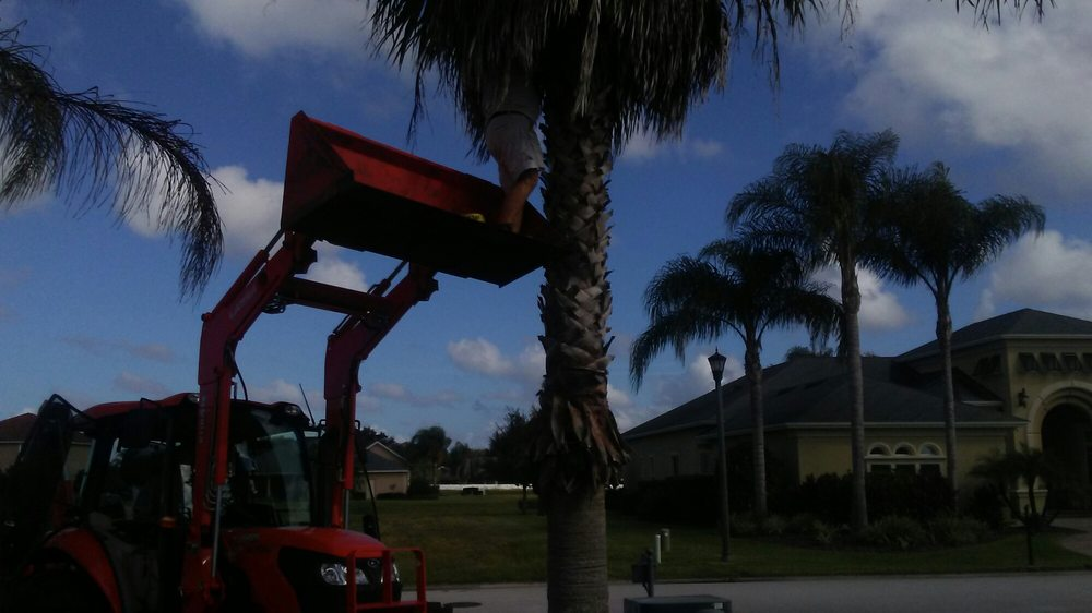 Central Florida Tree and Landscape Service: 1849 Cypress Lake Rd, Lake Wales, FL