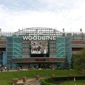 Woodbine Casino Phone Number