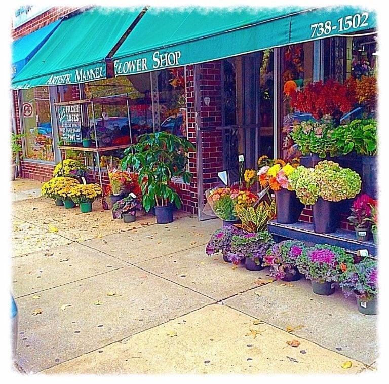 Artistic Manner Flower Shop: 211 Wolfs Ln, Pelham, NY