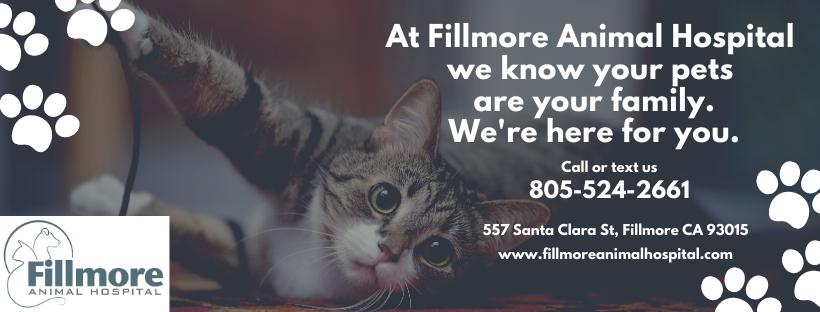 Fillmore Animal Hospital: 557 Santa Clara St, Fillmore, CA