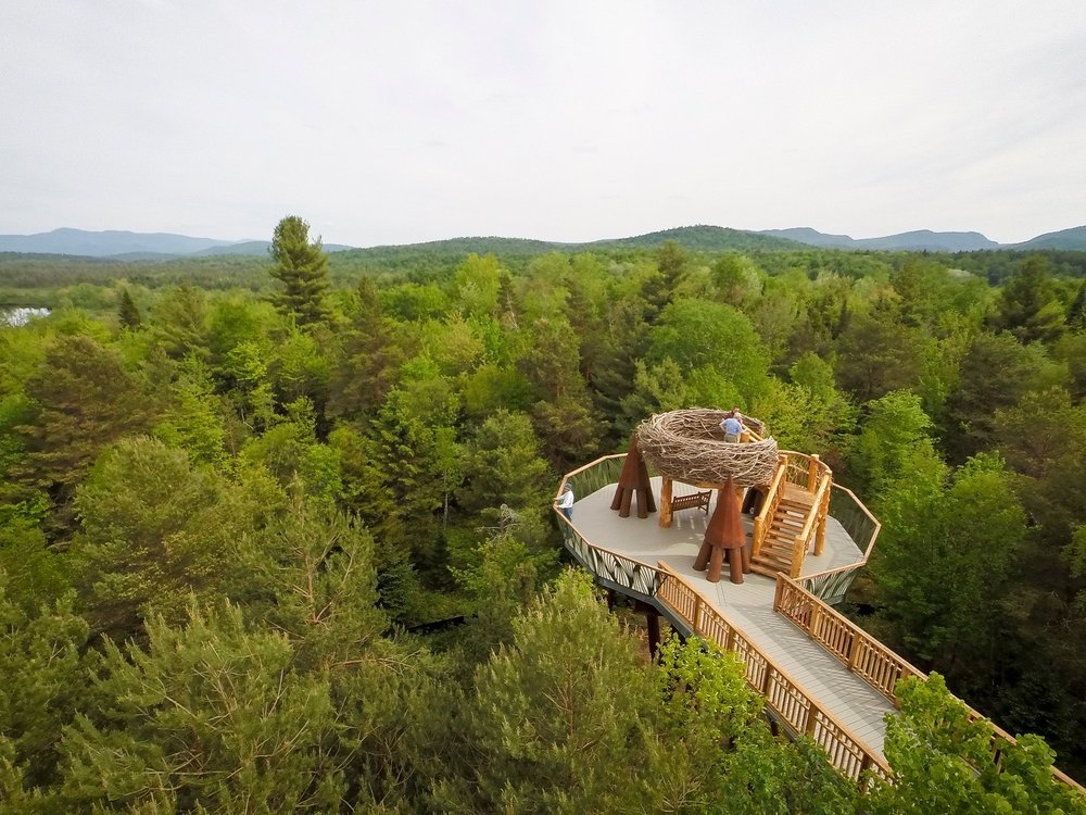 Wild Walk: 45 Museum Dr, Tupper Lake, NY