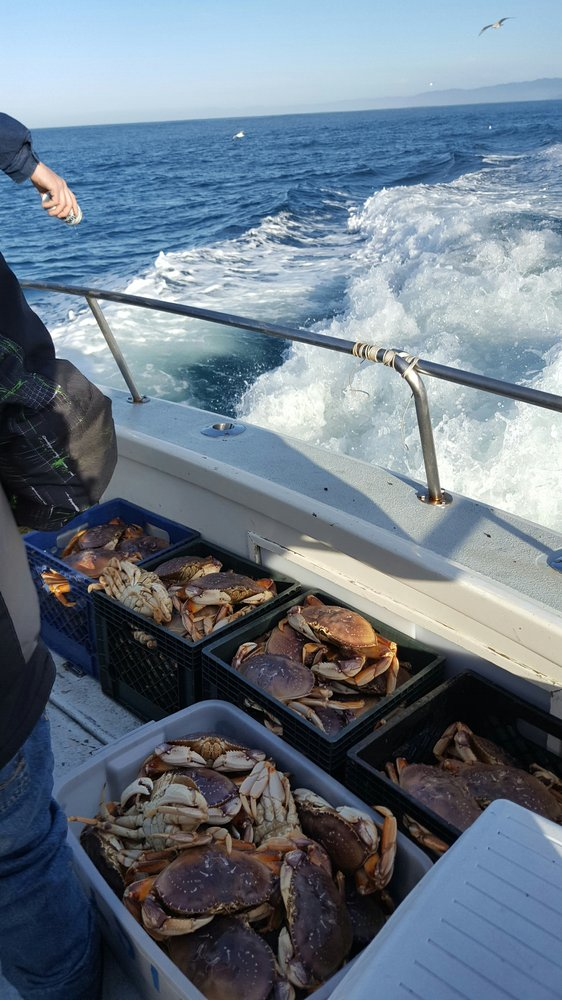 Hooked on mendo charters 12 photos fishing 32390 n for Fort bragg fishing charters