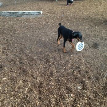 Stop Weston Dog Park