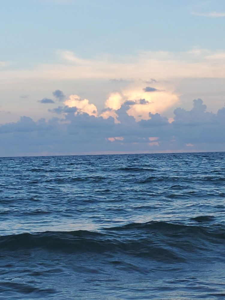 Dania Beach: 100 N Beach Rd, Dania Beach, FL