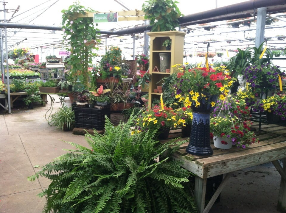 Dean\'s Greenhouse - Nurseries & Gardening - 3984 Porter Rd, Westlake ...