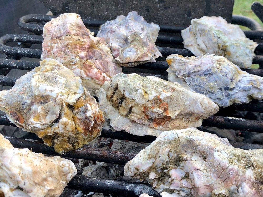 Westcott Bay Shellfish Company: 904 Westcott Dr, Friday Harbor, WA