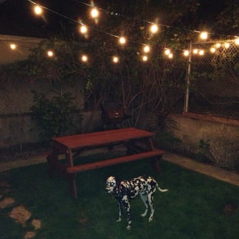 delights lighting. Photo Of Delights Christmas - San Diego, CA, United States Lighting T