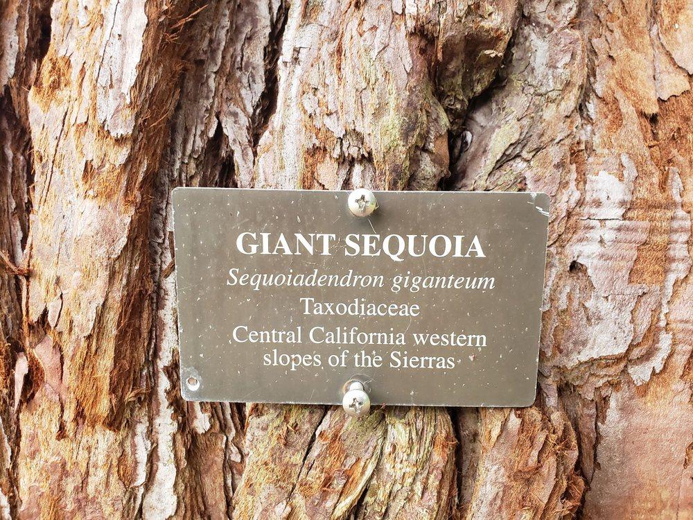 Social Spots from Blithewold Mansion, Gardens & Arboretum