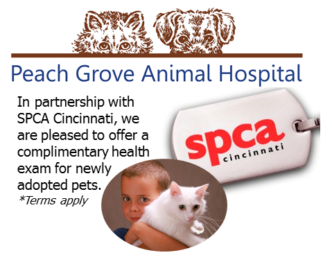 Peach Grove Animal Hospital: 5636 Springdale Rd, Cincinnati, OH