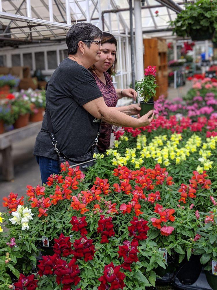 AJ Rahn Greenhouses: 4944 Gray Rd, Cincinnati, OH