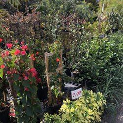 Attrayant Photo Of Kathyu0027s Korner Nursery U0026 Tree Farm   Saint Petersburg, FL, United  States